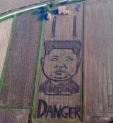 В Италии, в сое поле появился портрет Ким Чен Ира (фото)